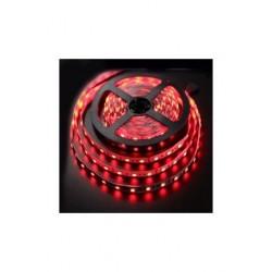 Akdeniz Aydınlatma AmberLED Şerit Led Iç Mekan 3 Çipli Silikonsuz Kırmızı 5 Metre 24
